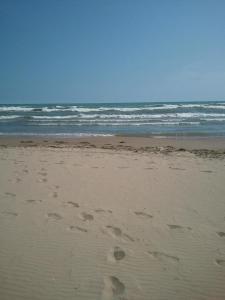 North Beach-FBcrop