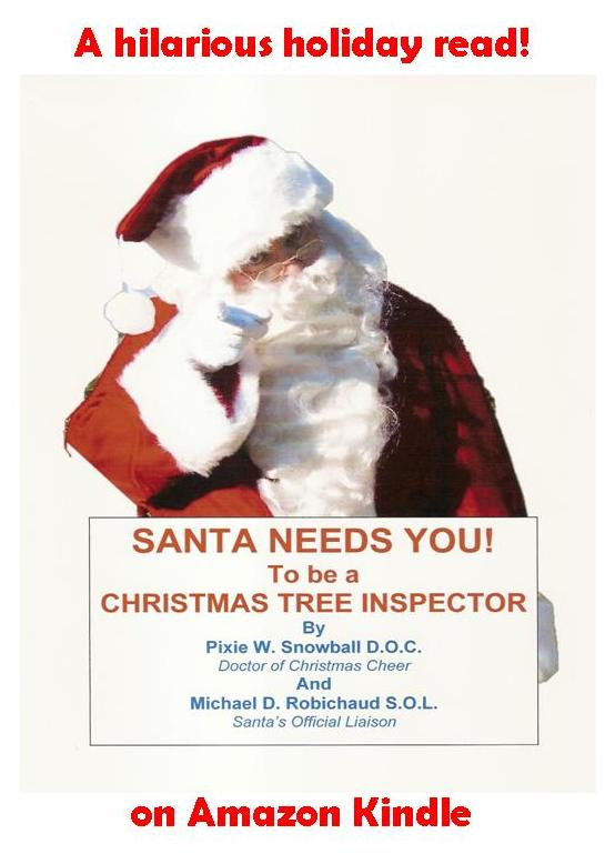Santa flyer 2
